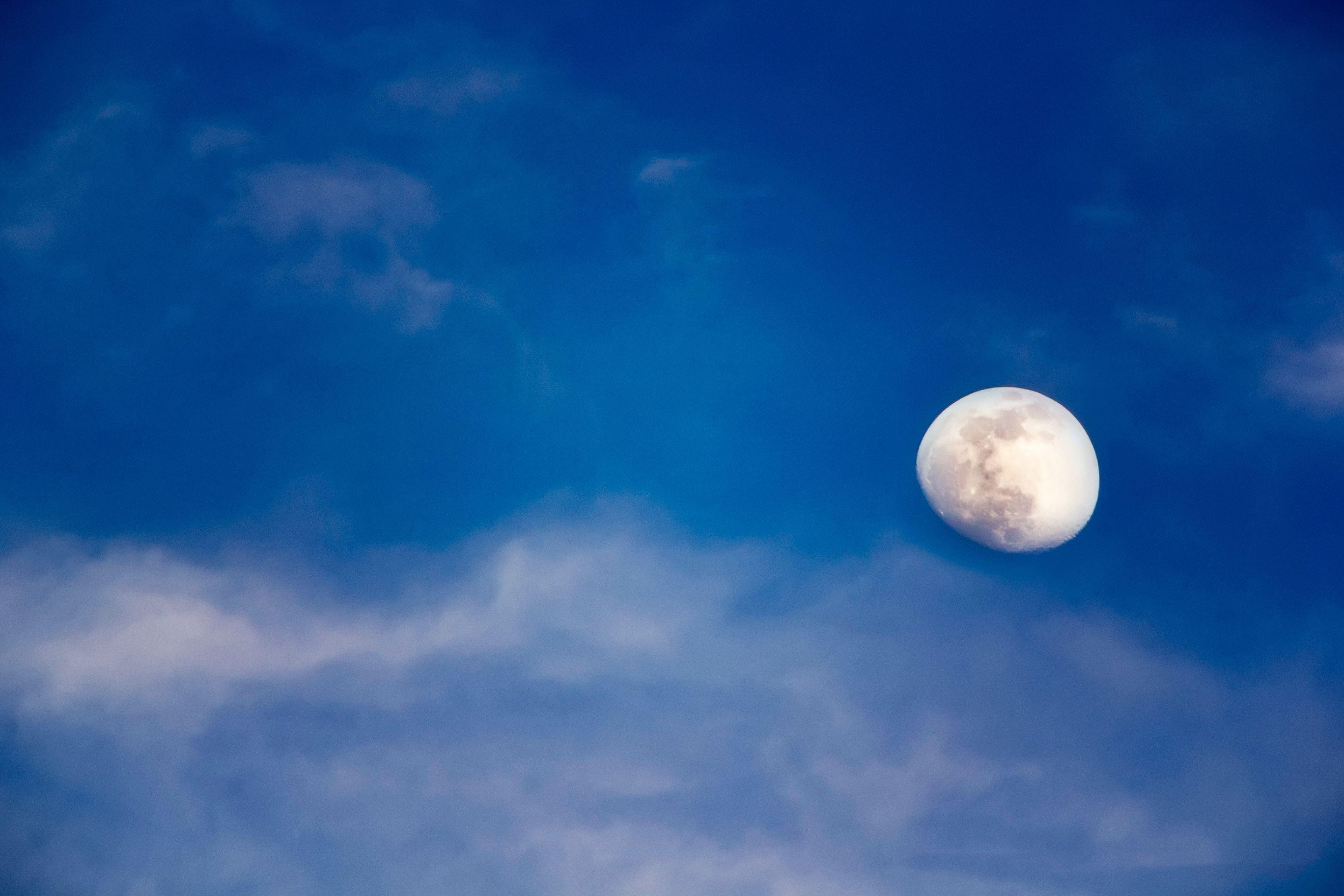 cryptos to the moon